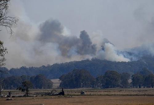 Australia đặt mức cảnh báo cao nhất vì cháy rừng diện rộng - Ảnh 1