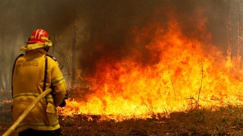 Australia đặt mức cảnh báo cao nhất vì cháy rừng diện rộng - Ảnh 2