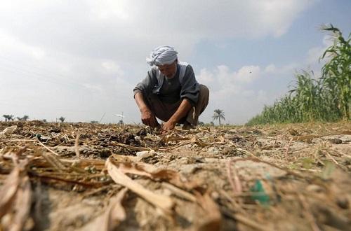 Người dân Ai Cập khó khăn vì thiếu nước trầm trọng - Ảnh 2