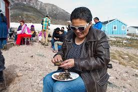 """Rùng mình với món """"chim lên men"""" có hương vị từ địa ngục của người Inuits ở vùng bắc Greenland  - Ảnh 3"""
