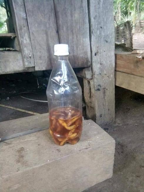 Chỉ vì thiếu nước… thanh niên cứ lên rẫy là uống rượu cả tuần - Ảnh 1