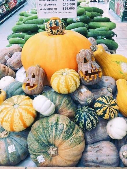 Phát cuồng với bí ngô Halloween khổng lồ lần đầu được trồng ngay tại Việt Nam - Ảnh 10
