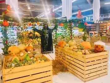 Phát cuồng với bí ngô Halloween khổng lồ lần đầu được trồng ngay tại Việt Nam - Ảnh 2