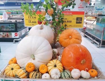 Phát cuồng với bí ngô Halloween khổng lồ lần đầu được trồng ngay tại Việt Nam - Ảnh 4
