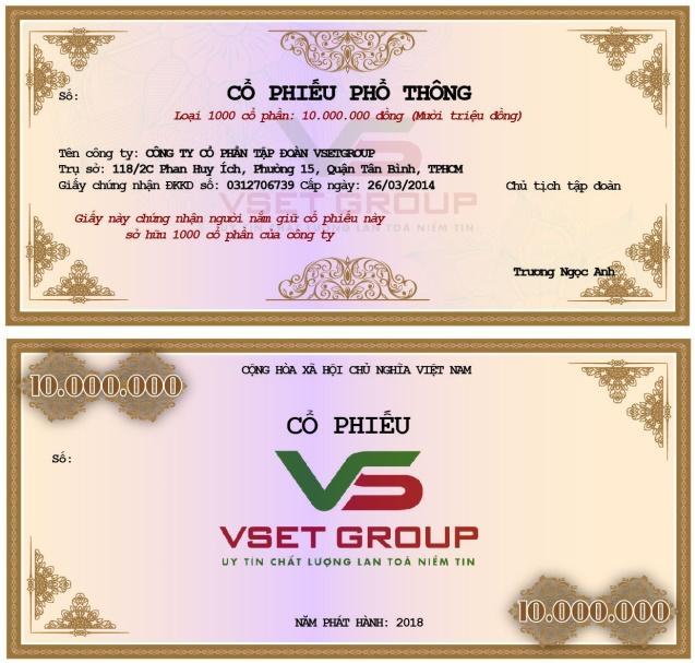 Tập đoàn VSETGROUP phát hành cổ phiếu, trái phiếu năm 2018 - Ảnh 1