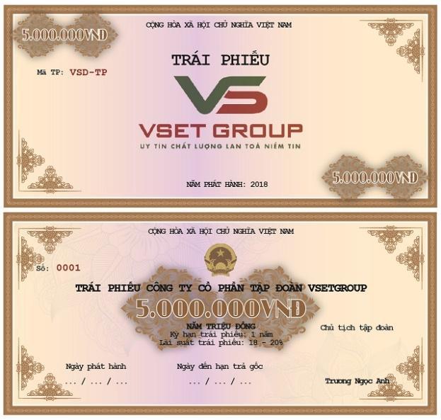 Tập đoàn VSETGROUP phát hành cổ phiếu, trái phiếu năm 2018 - Ảnh 2