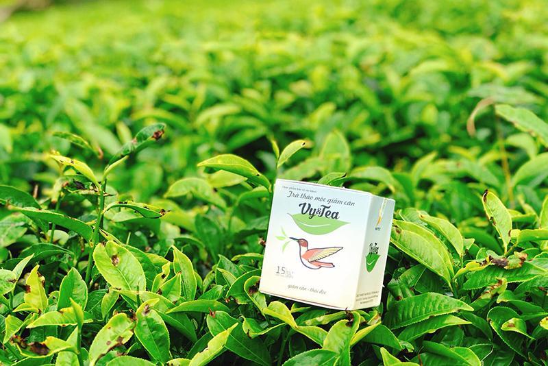 Trà giảm cân Vy Tea có hiệu quả không?  - Ảnh 2