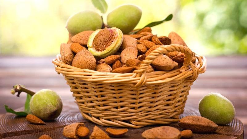 Điểm danh các loại thực phẩm tăng cường miễn dịch cho cơ thể - Ảnh 2
