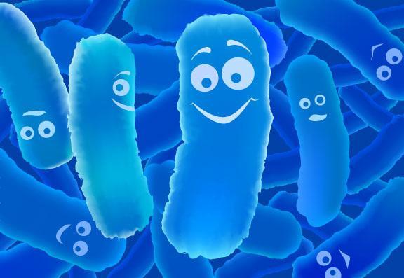 """Lợi khuẩn nào giúp người viêm đại tràng """"thoát nỗi khổ""""? - Ảnh 1"""