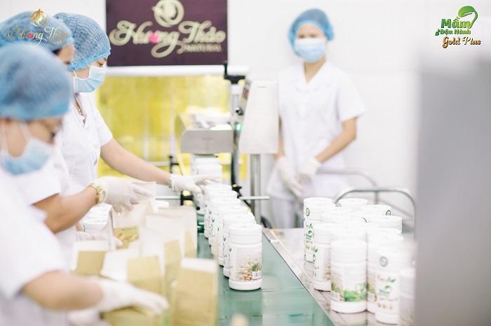 Mầm đậu nành Gold Plus Hương Thảo Natural - Gìn giữ nét xuân phụ nữ Việt - Ảnh 3