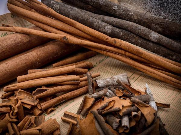 Bật mí những cây thuốc Nam chữa bệnh tiểu đường tuýp 2 được tin dùng nhất - Ảnh 3