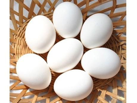 9 loại thực phẩm cực tốt cho người thận yếu - thận hư - Ảnh 6