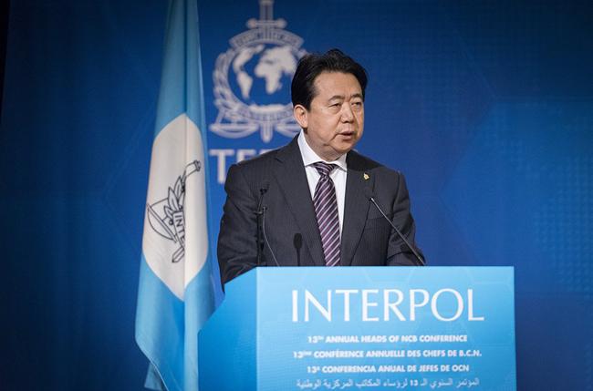 Interpol muốn có thông tin chính thức về Chủ tịch Mạnh Hoàng Vĩ từ Trung Quốc - Ảnh 1