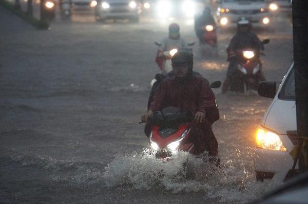 """TP. HCM mưa như """"thác đổ"""", rắn rết bơi hết vào nhà khiến người dân nơm nớp sợ hãi - Ảnh 2"""