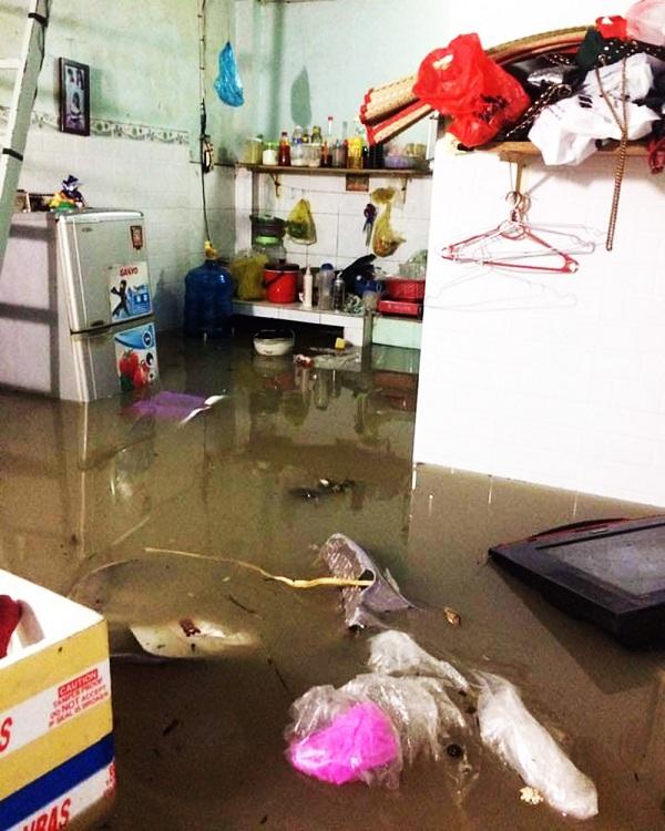 """TP. HCM mưa như """"thác đổ"""", rắn rết bơi hết vào nhà khiến người dân nơm nớp sợ hãi - Ảnh 4"""