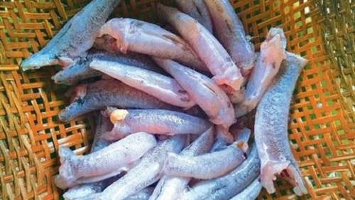 Cá bống chiên cay ngon miễn chê cho ngày cuối tuần - Ảnh 1