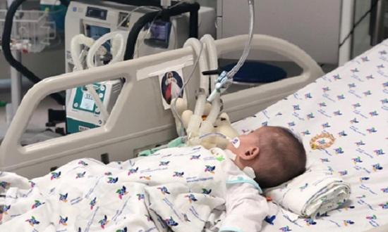 Bé trai 15 tháng tuổi nguy kịch vì uống thuốc trừ sâu đựng trong chai trà xanh - Ảnh 1