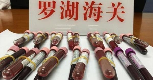 """""""Khát"""" con trai, thai phụ Trung Quốc chuyển lậu máu sang Hong Kong xét nghiệm - Ảnh 1"""