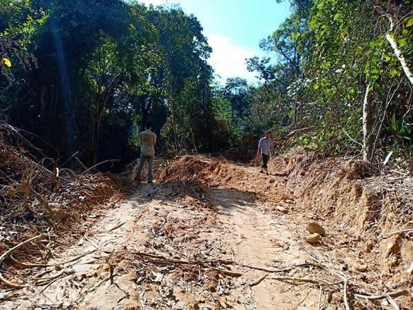 """Ai đứng đằng sau việc """"xẻ núi, bạt rừng"""" mở đường vào cánh rừng nguyên sinh ở Thừa Thiên-Huế? - Ảnh 1"""