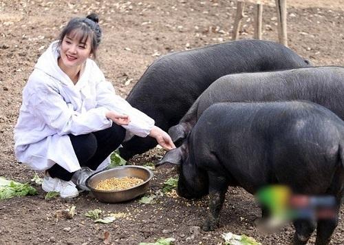 Tin tức đời sống mới nhất ngày 29/11/2019: Ông bố trao thưởng hơn 300 con lợn cho ai chịu lấy con gái - Ảnh 1
