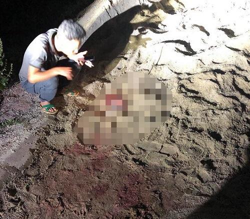 Kinh hoàng bé trai 7 tuổi bị đàn chó 10 con lao vào cắn xé nhập viện trong tình trạng nguy kịch - Ảnh 1