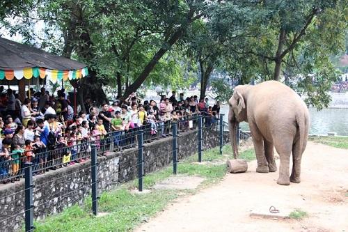 Gợi ý những địa điểm vui chơi thú vị cho bé dịp Quốc tế thiếu nhi 1/6 ở Hà Nội  - Ảnh 1