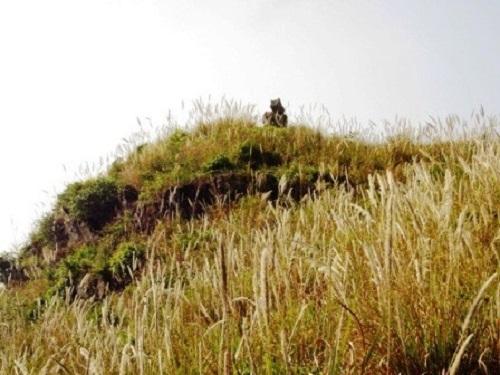 Chiếc chum vàng hóa đá và câu chuyện ly kỳ về 10 người con trai - Ảnh 2