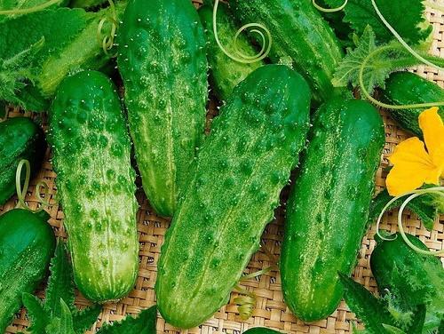 10 loại trái cây giải nhiệt, thanh lọc cơ thể nhất định phải ăn ngày nắng nóng - Ảnh 4