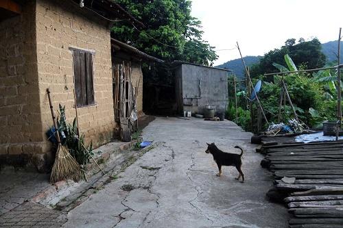 Kỳ lạ tục làm mâm cúng người sống của người Nùng ở Bắc Giang - Ảnh 2