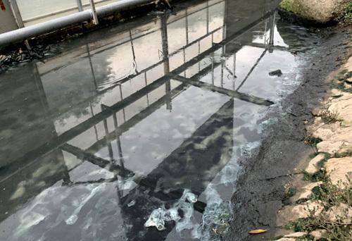 Sau thí điểm công nghệ của Nhật Bản lớp bùn sông Tô Lịch giảm đáng kể - Ảnh 1