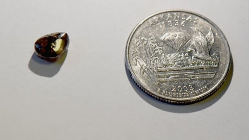 Dạo chơi quanh công viên, thầy giáo vớ được viên kim cương 2,12 carat - Ảnh 2