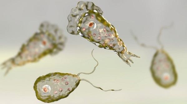 """Tin tức đời sống mới nhất ngày 16/9/2019: Điều trị thành công cho một trẻ nhiễm """"khuẩn ăn thịt người""""  - Ảnh 3"""