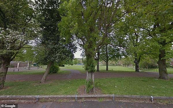 Vô tình nhặt được bức thư lạ trong công viên, mở ra xem không cầm được nước mắt - Ảnh 3
