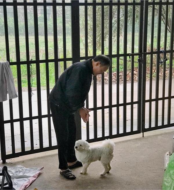 Nhặt con chó mù về nhà, người đàn ông âm thầm làm điều này 2 năm khiến ai nghe cũng cảm động - Ảnh 1
