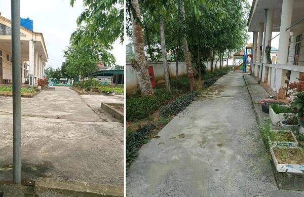 Muôn hoa khoe sắc trong khu cách ly công dân ở Hà Tĩnh - Ảnh 7