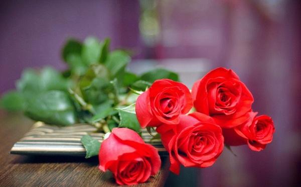Những lời chúc 8/3 cho đồng nghiệp nữ đảm bảo chị em thích mê - Ảnh 1