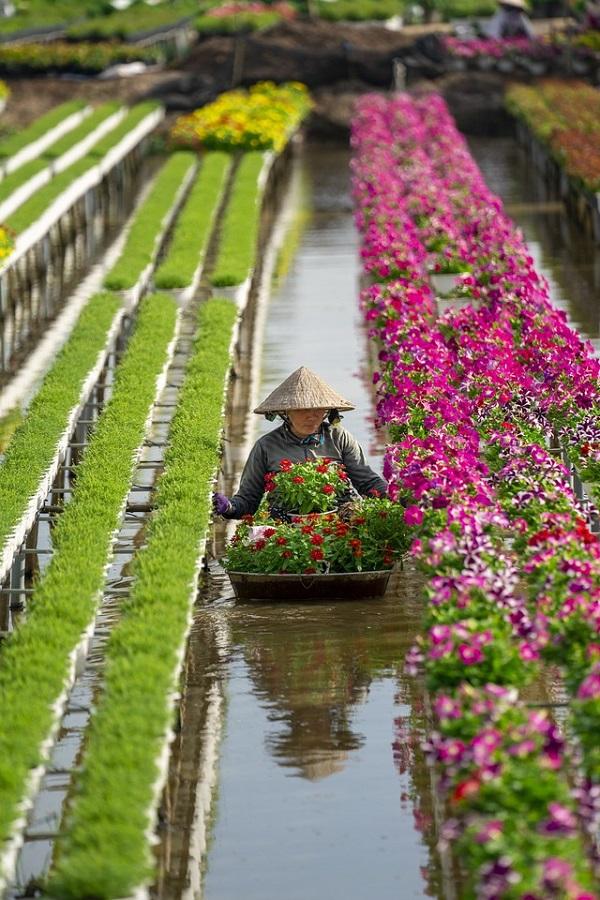 """Nhiếp ảnh gia Việt Nam gây """"sửng sốt"""" tại giải ảnh quốc tế - Ảnh 6"""