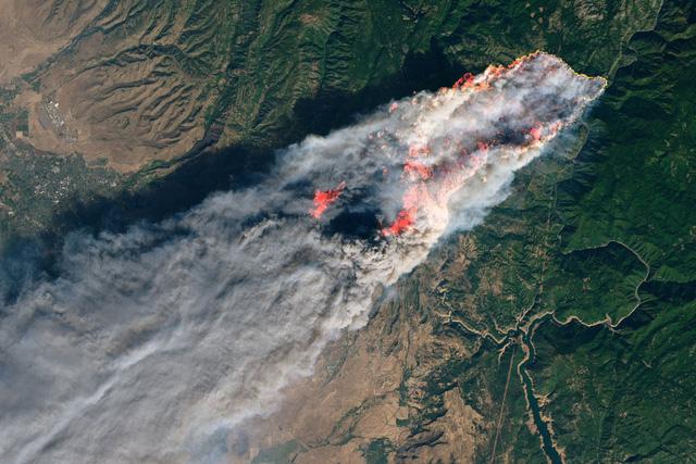 Thảm kịch cháy rừng ở California: Số nạn nhân mất tích tăng sốc tới 1276 người - Ảnh 2