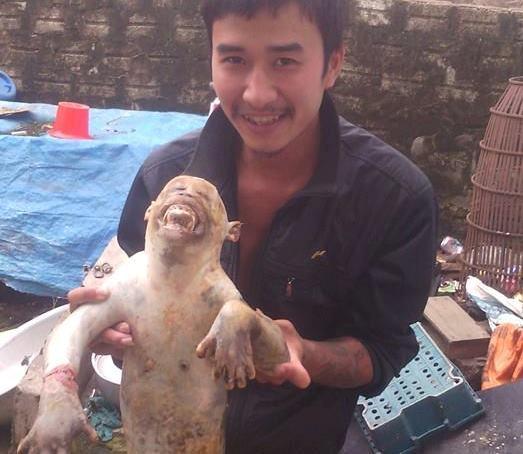 Truy tìm nam thanh niên giết thịt khỉ rừng dã man rồi đăng lên Facebook khoe chiến tích - Ảnh 2