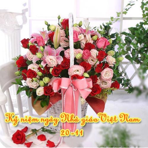 21 bức hình đẹp chúc mừng ngày nhà giáo Việt Nam 20/11 - Ảnh 2