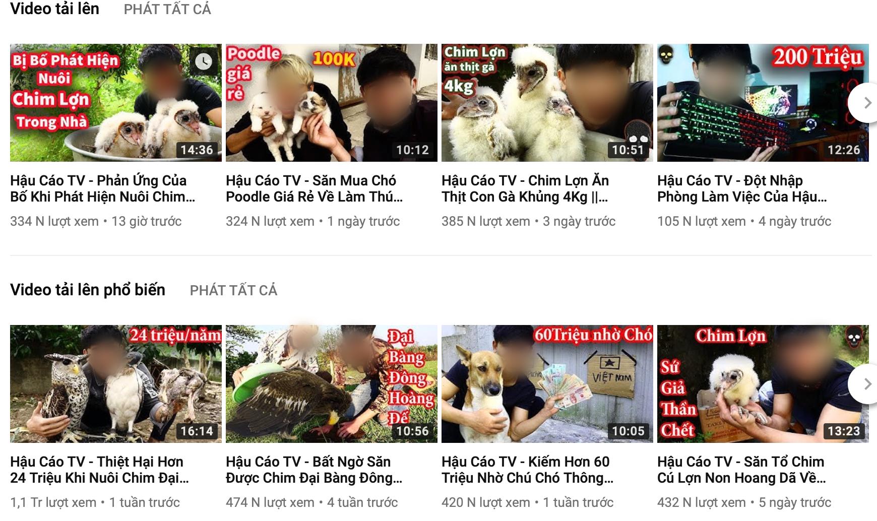 """Cộng đồng mạng kêu gọi """"tẩy chay"""" kênh youtube đào xác mèo rồi hả hê nướng thịt ăn - Ảnh 1"""