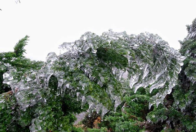 """Hàng ngàn người ngắm băng phủ kỳ ảo trên đỉnh Mẫu Sơn trong cái rét """"cắt thịt"""" - Ảnh 12"""