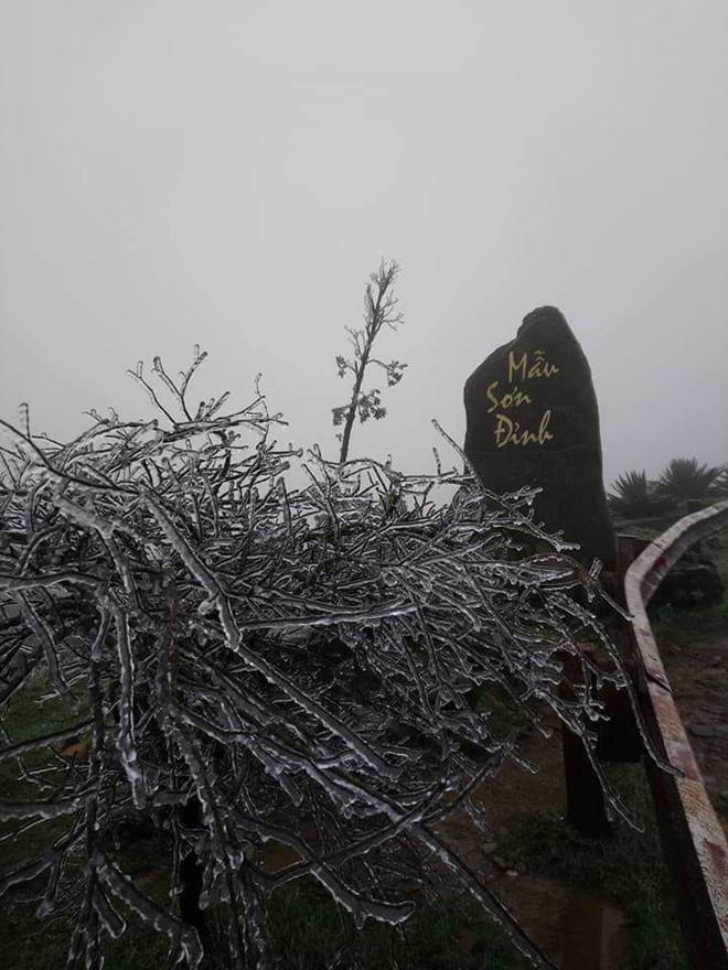 """Hàng ngàn người ngắm băng phủ kỳ ảo trên đỉnh Mẫu Sơn trong cái rét """"cắt thịt"""" - Ảnh 8"""