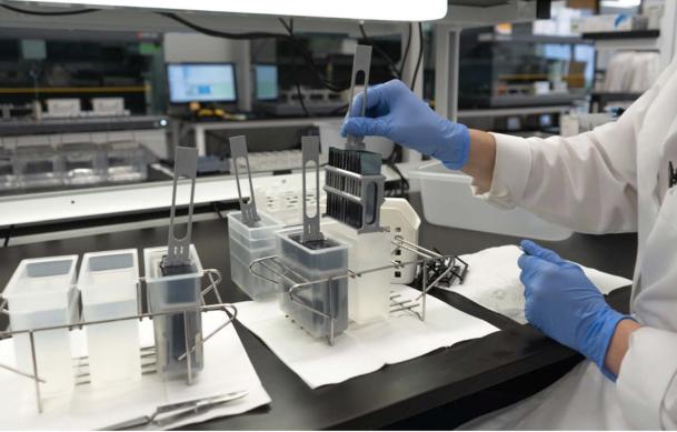 Công nghệ giải mã gen giúp tỷ lệ điều trị thành công bệnh ung tăng gấp đôi so với năm 1970 - Ảnh 1