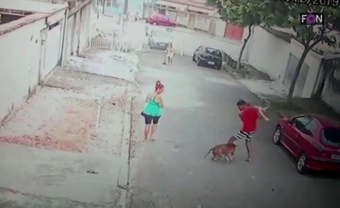 Người đàn ông mạo hiểm tính mạng giải cứu bé trai 4 tuổi khỏi chó dữ tấn công - Ảnh 1