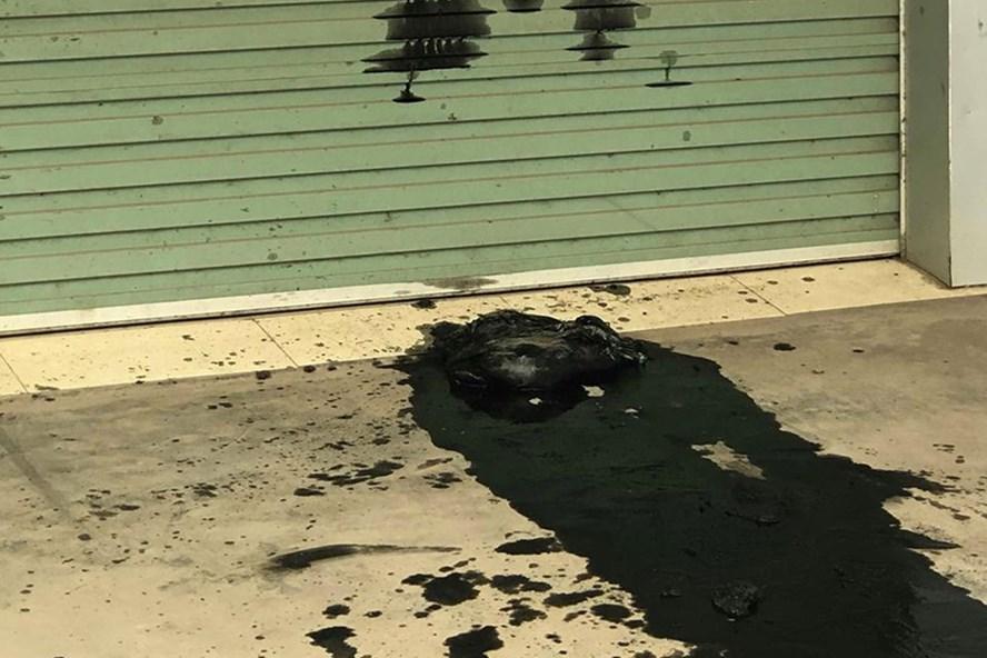 Công ty taxi bị uy hiếp bằng chất bẩn hôi thối trước cổng trụ sở mới - Ảnh 1