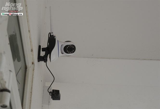 Vụ thầy giáo bị tố làm nữ sinh lớp 8 có thai ở Lào Cai: Thêm thông tin gây sốc về camera giám sát - Ảnh 2