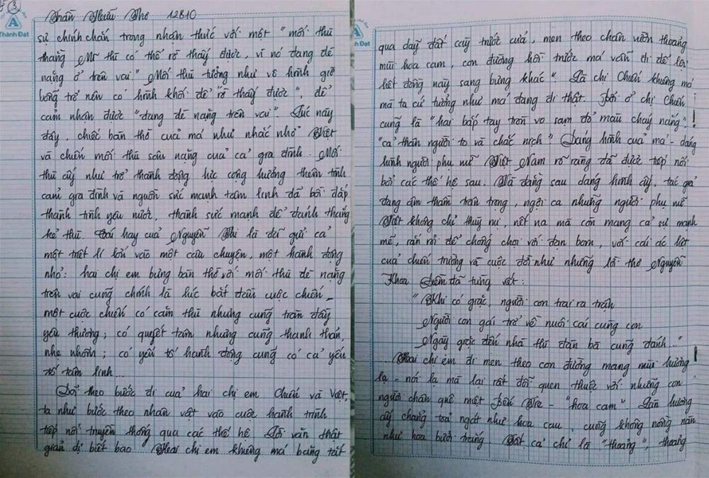 Choáng với bài văn 18 trang của nam sinh khiến cô giáo cũng không nói nên lời - Ảnh 5