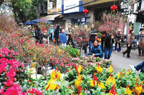 Chợ hoa Tết và thú chơi hoa - Ảnh 1