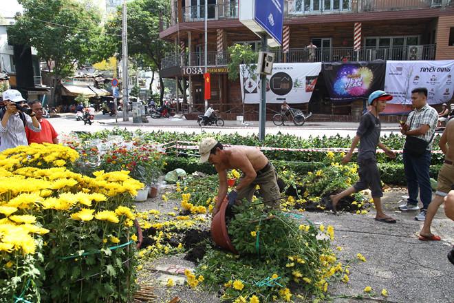 Tiểu thương xé nát hoa khi giảm giá xuống 5.000 đồng/chậu mà vẫn không có người mua - Ảnh 4